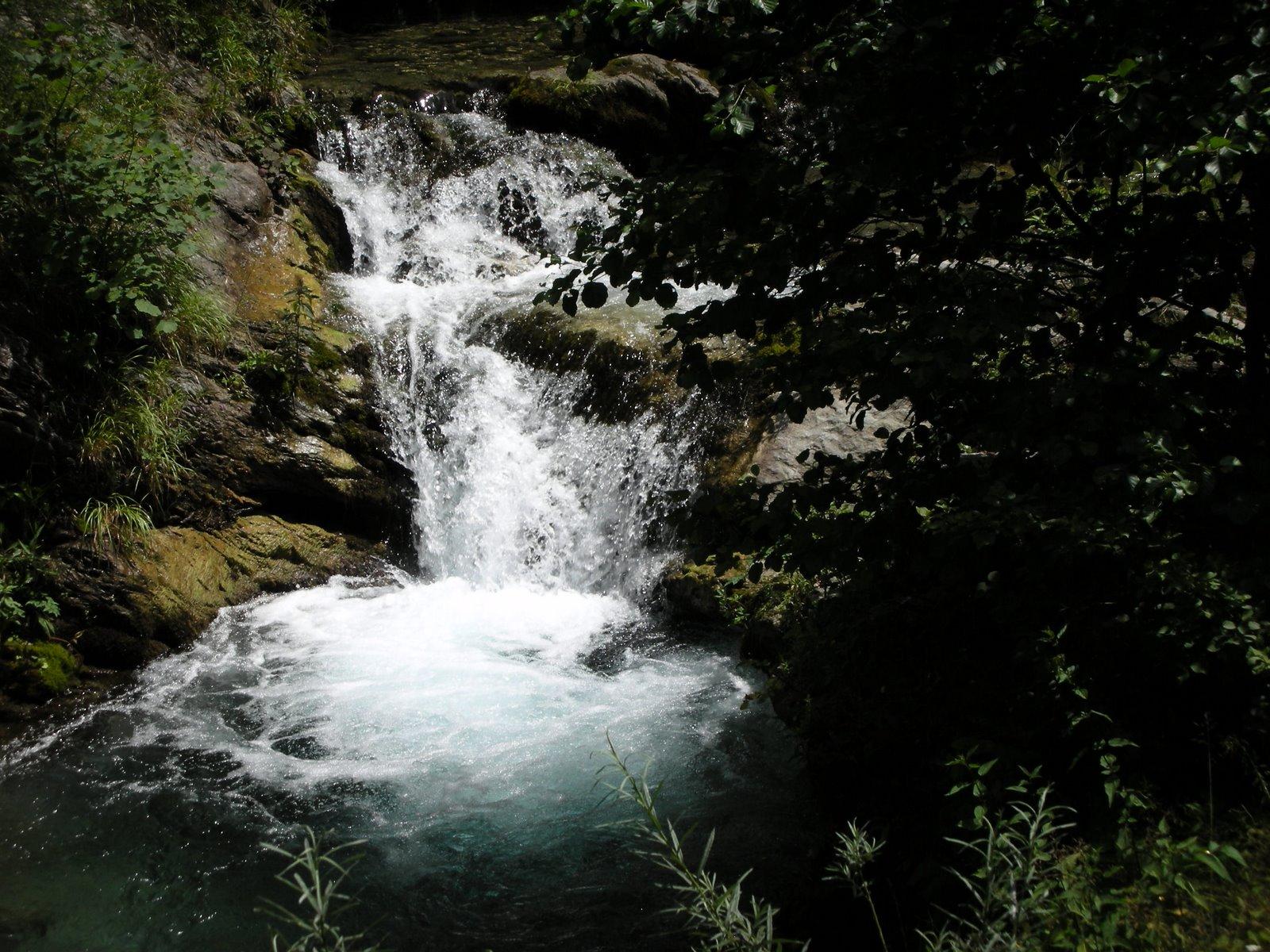 Imagini pentru apa cu aur maieru muntii dornei