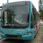 autobuz 7