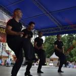 3 festival traditii tiganesti 2014
