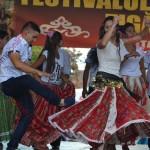 4 festival traditii tiganesti 2014