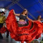 5 festival traditii tiganesti 2014