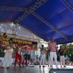 7 festival traditii tiganesti 2014