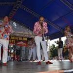8 festival traditii tiganesti 2014