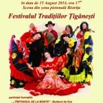 afis festival traditii tiganesti 2014