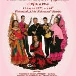 Afis Festival traditii tiganesti 2015