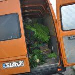 20 accident rutier sintereag 23.06.2016