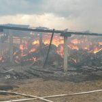 incendiu archiud 2 iul 16