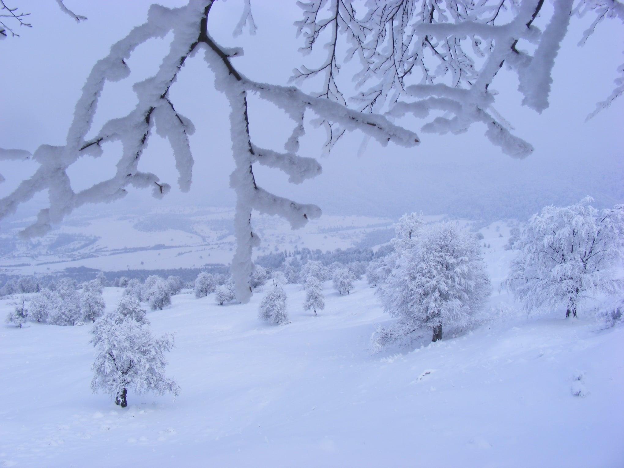 Bucurați-vă de zăpadă! Nu ține mult, vremea se încălzește spre sfârșitul săptămânii